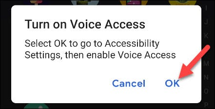 Grants accessibility permissions to Voice Access.